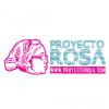 'Proyecto Rosa': todos con Rosa Amelia Hernández